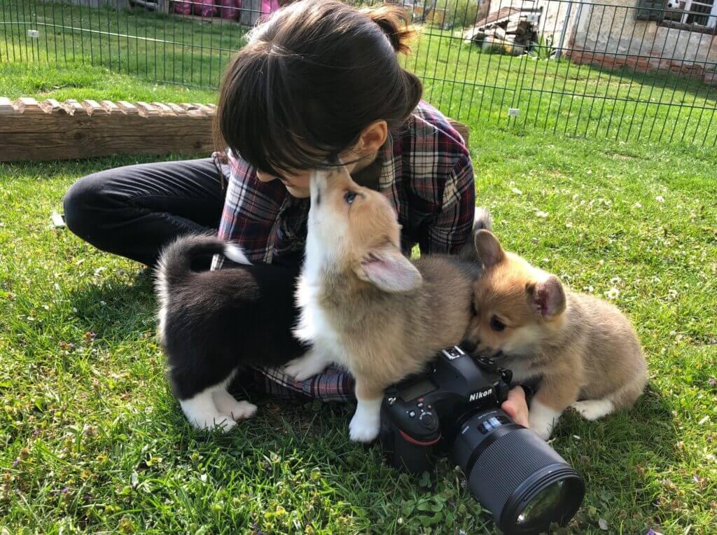 Sabine mit Hundewelpen