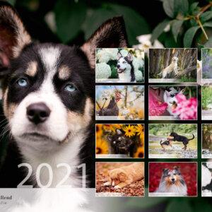 Fotokalender 2021
